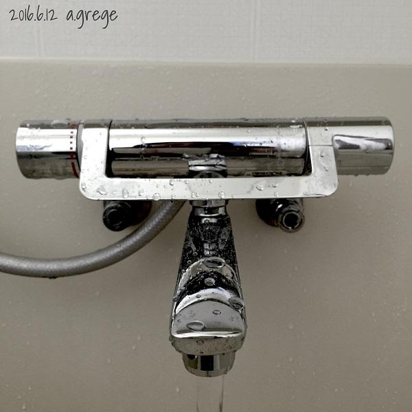 シャワーヘッド600